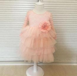 $enCountryForm.capitalKeyWord NZ - Kids Girls Lace Dresses Baby Girl Floral Print Dress Boutique 2017 Infant Princess Tulle Vest Tutu Dress for Party Children Clothing B437