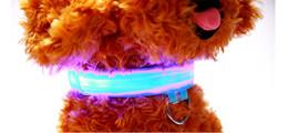 Nylon Dog Collar Wholesale UK - Pet Dog Collar LED Flash Collars 7Colors 5Sizes Night Safety LED Light Flashing Glow Nylon Pet Dog Collar Free DHL