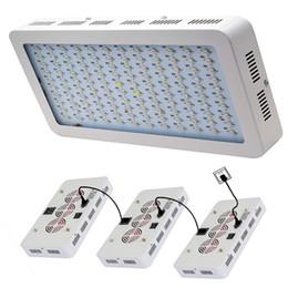 Ingrosso LED coltiva la luce 1200W 1000W spettro completo principale coltiva Tenda coperto Serre lampada della pianta coltiva la lampada per veg fioritura