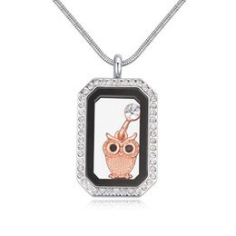 open magic box NZ - Fashion Accessories Jewelry Austrian Crystal Geometric Rectangle Owl Pendants Magic Box Open Real Gold Statement Sweater Necklaces For Women