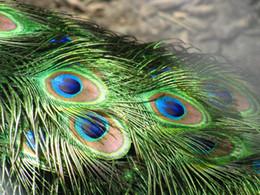 Ingrosso Genuine Natura 10-12 pollici L piuma di pavone Elegante accessori decorativi per la decorazione del partito di alta qualità 200pcs / lot spedizione gratuita