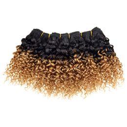 Sıcak Satış Brezilyalı Örgü İnsan Saç Uzantıları Kinky Kıvırcık T1b 27 # Sarışın Jerry Kıvırcık Ombre Örgü Kısa Brezilyalı Saç