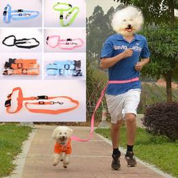 $enCountryForm.capitalKeyWord Canada - Estrella Nylon Running Pet Dog Leash Rope Training Slip Adjustable Traction Collar Rope Dog Harness Training Walk