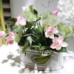 2017 New Bowl Lotus Plant Lotus Plant Potted Bonsai Family, Beautiful Lotus  Bonsai Flower Arrangement Free Shipping Part 89
