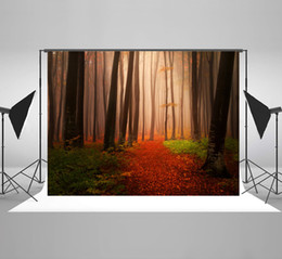 $enCountryForm.capitalKeyWord Canada - Wrinkles Free Photography Backgrounds Autumn Tree Backdrop Natural Scenery Mysterious Forest Photo Background for Wedding Photographic