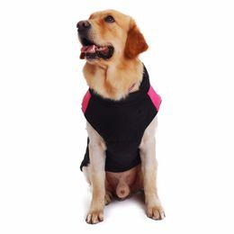 $enCountryForm.capitalKeyWord NZ - Fashion pet clothes Sportive style outwear puppy cat small dog cool baseball uniform coat spring autumn S-4XL