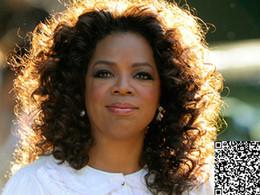 Discount oprah curly human hair wigs 2017 oprah curly human hair 2017 oprah curly human hair wigs oprah winfrey lace wig hairstylebrown oprah curly virgin urmus Image collections