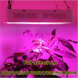 Discount ir chips - Full Spectrum 300W 450W 600W 1000W Double Chip LED Grow Light lamps Red Blue White UV IR For hydroponics indoor plants C