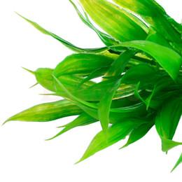 $enCountryForm.capitalKeyWord Canada - Plastic Manmade Water Plant Grass Green 14cm Height for Aquarium