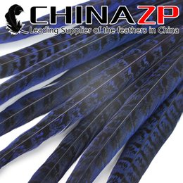 Blue Costume Tail Canada - Gold Manufacturer CHINAZP Crafts Factory 50 pieces lot 30-35cm(12-14inch) Directly Dyed Royal Blue Ringneck Pheasant Tail Feathers