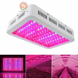 2017 Best selling Double chips 1000W LED Grow Light with 9-band Full Spectrum for Hydroponic Systems and Greenhouse cheap sells led chips from sells led chips suppliers
