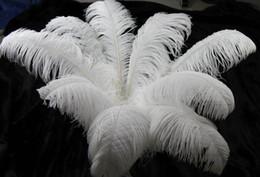 100 pz 10-12 pollici 25-30 cm Plumes di piuma di struzzo bianco per il centrotavola di nozze festa di nozze decorazione dell'evento decorazione festiva in Offerta