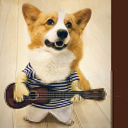 $enCountryForm.capitalKeyWord NZ - Funny Dog Costumes Guitar Player Cosplay Clothing Dog Costume Halloween Party Costume Clothes For Pet Dogs Cats M-XL