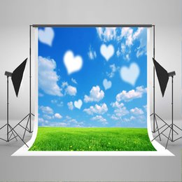 paint muslin backdrop Canada - 5x7ft(150x220cm) Blue Sky Photo Backdrops White Love Cloud Background Spring Green Grass Photography Backdrop for Children Birthday Photo