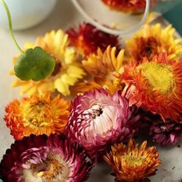 Organic Style Flowers UK - Rushed Flower Tea Fflower Tea Style Keep Dry Qs Colorful Chrysanthemum Flower Tea 500g Dried Herbal Blooming Top Grade Organic Type