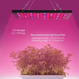 Venta al por mayor de El panel de 15W crece la serie Light, la planta de 15W LED antivaho crece liviana con el espectro de infrarrojos UV azul y rojo para la floración creciente