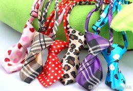 Vente chaude Livraison gratuite chien animal chat noeud papillon cravate collier mélangé couleur différente 120 pcs en Solde