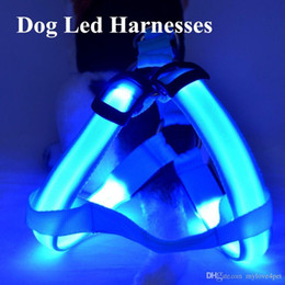 Discount springs for chest - D05 dog harness LED light pet chest strap luminous dog harness for medium large dog new arrival Free shipping