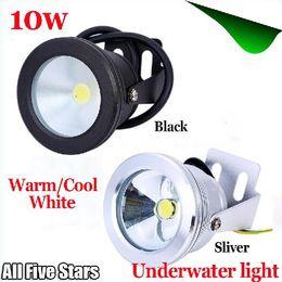 $enCountryForm.capitalKeyWord UK - DHL ship 12V or 85-265V 10W Underwater IP68 LED light Flood lamp Pool Light Aquarium Fountain bulbs Floodlight warm   White Wash Spot lamp
