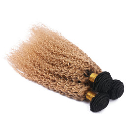China Strawberry Blonde Human Hair Weaves Afro Kinky Hair Extension Two Tone Brazilian Virgin Kinky Curly Human Hair For Black Women supplier peruvian curly human hair two tone suppliers