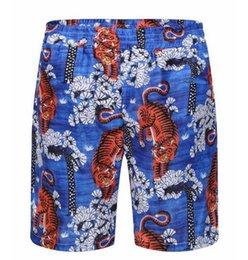 Pantalon De Plage Garçon Pas Cher-Fournir Tiger Men Beach Shorts Brand Summer Drying Rapide Garçons Natation Short Pants Homme Mens Trunks Blue M-3XL
