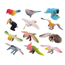 $enCountryForm.capitalKeyWord Canada - 12pcs Different Kinds Birds Toy Set Plastic birds Play Toys Bird Model Action & Figures Best Gift for kids Developmental Toy