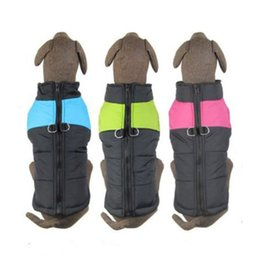 Stock Clothes Winter UK - Factory Outlets In stock New Hoodie Costume Dog Clothes Pet Jacket Coat Puppy Cat Costumes Apparel Winter