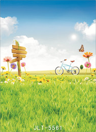 $enCountryForm.capitalKeyWord Canada - vinyl cloth photography background scenic spring paintings customized computer printed photo backdrop for photo shooting wedding children