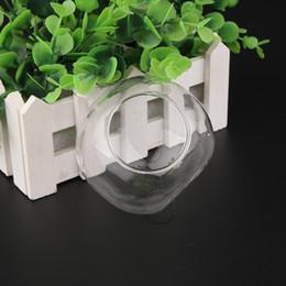 Fai da te Essential 2pcs x palla di vetro di alta qualità per microscopici bonsai / piante succulente / casa delle bambole vuoto imballaggio