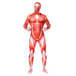 $enCountryForm.capitalKeyWord Australia - Attack on Titan Cosplay Costume Lycra Spandex Three Skin Tight Suit Halloween Full Body Zentai Suit