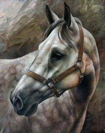 white horse oils NZ - Framed Animals White Horse,genuine Pure Handpainted Animal Art oil Painting On Thick Canvas Multi sizes Available Free Shipping MY278 ny