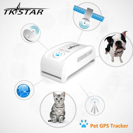 Gsm Gprs Gps Australia - TKSTAR MiNi Pet GPS Tracker Necklace GSM GPRS TK909 Real Time SOS Tracking Long Standby Time For Dog Cats Pets with retail box