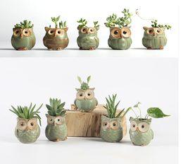 owl office decor. Cartoon Owl -Shaped Flower Pot For Succulents Fleshy Plants Flowerpot 5pcs Set Ceramic Small Mini Home Garden Office Decor 1603 0