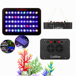 marine fish lighting NZ - Fish tank 165W 300w Dimmable Led Aquarium lights Free shipping for marine aquarium professional Full spectrum Decoration hot sale