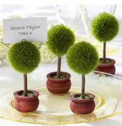 Carta da biliardo di colore verde per giocare a bonsai per sedie da tavolo con nome da tavolo
