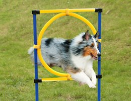 $enCountryForm.capitalKeyWord Canada - Outdoor Training Equipment Pet Dog Agility Exercise Sports Obedience Show Activity Hoop Jump Game Exercise Pole Carrying Case