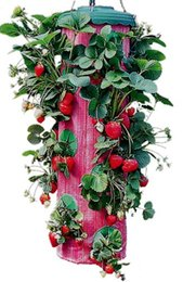 $enCountryForm.capitalKeyWord Canada - Red Upside-Down Strawberry Planter vertical garden wall planter grow bag planter wall bag growing bags vertical garden