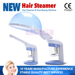 Home Steamers Canada - 2 In 1 Home Use Hair Steamer With Facial Steamer Hot Steamer Salon Ozone DHL Free Shipping