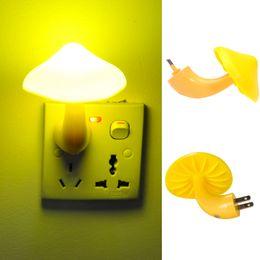 Light Energy Kids Suppliers