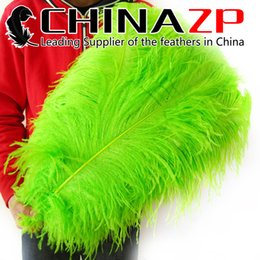 Chinese  Leading Supplier CHINAZP Factory 100pcs lot Large Size 24-26inch (60-65cm) Exporting Good Quality Dyed Lime Green Ostrich Feathers manufacturers