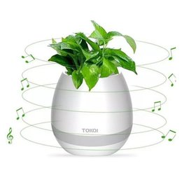 smart pots UK - Wireless Bluetooth smart bluetooth Music Flower pots chargable real plant touch play flowerpot colorful light long time play bass speaker Ni