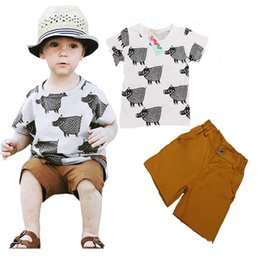 Wholesale Cotton Knickers Canada - Baby Girls Boys Cotton Short Sleeve Shirts+ Shorts Toddler Tops Tee Short Pants Trousers Children Kids Shirts Knickers Clothing Sets Suits