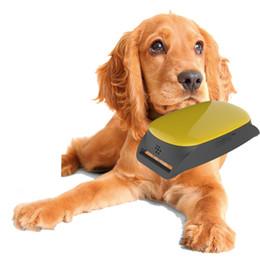 $enCountryForm.capitalKeyWord NZ - Mini GPS Tracker Locator IPX6 waterproof for small PET dog cat personal old man GPS tracking device