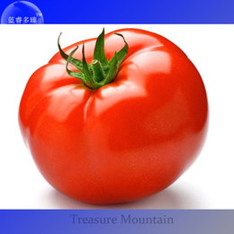 $enCountryForm.capitalKeyWord Australia - Easy to grow Tomato Organic Seeds, Professional Pack, 100 Seeds   Pack, Old Fashioned Heritage Variety Vegetable