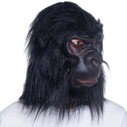 Chimpanzee in Wedding Dress