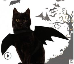 Cosplay Characters NZ - Halloween Pet Bat Wings Cat Black Bat Costume Halloween Funny Cat Cosplay Clothes Pet Cat Clothing Supplies