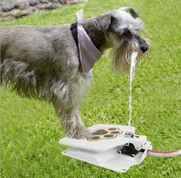 $enCountryForm.capitalKeyWord Australia - Pet Feeder Drinker Dog Outdoor Drinker Pressure Pedal Automatic Sprinkler Fountain Dog Foot Automatic Water Intake Free Shipping