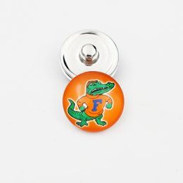 Опт Флорида аллигаторы Оснастки кнопки 18 мм круглый стеклянный колледж спортивная команда Оснастки прелести высокое качество Оснастки аксессуары для ожерелье браслет серьги