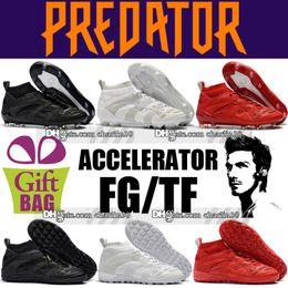Cheap Shoes Boots NZ - 2018 Mens Turf Soccer Cleats Socks Indoor TF Soccer Shoes Predator Accelerator DB FG Football Boots Cheap David Beckham Soccer Boots White