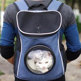 Shoulder Dog Carriers NZ - Comfort Dog Carrier Bags Travel Pet Cat Carrier Breathable Mesh Backpack Bag Portable Double Shoulder Outdoor Bag